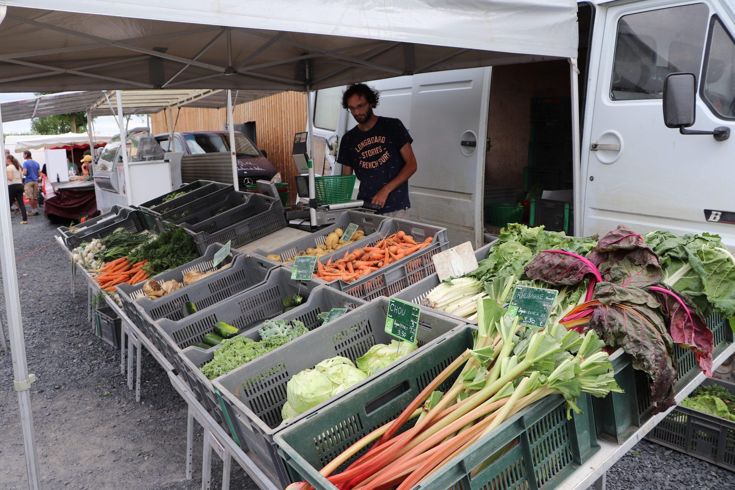 Cyprien Gony – Maraîchage & plants : légumes AB au détail